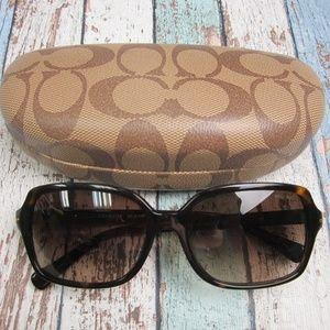 Coach HC8116F Women's Sunglasses/NDM365